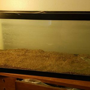 Huge Fish Tank Aquarium 100 Gallon With Light And Many Extras 1 Pane Needs Replaced for Sale in Palm Harbor, FL