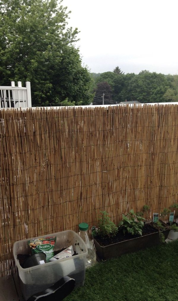 Reed fencing, bamboo sticks