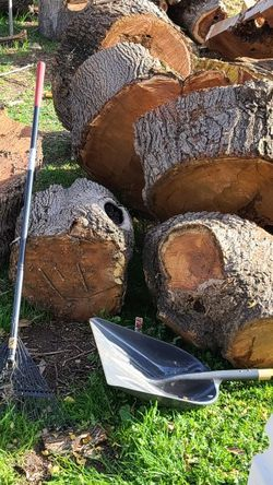 Free Firewood for Sale in Escondido,  CA