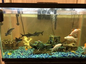 Fish Aquarium for Sale in Gulf Breeze, FL