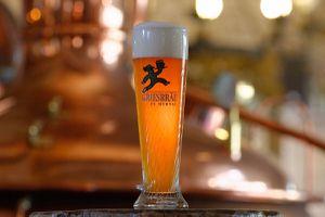 Collectible German Beer Glass for Sale in Arlington, VA