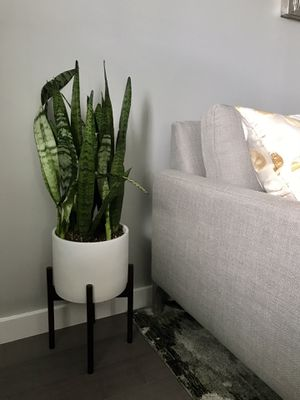 Mid-Century Modern Planter Pot with Stand for Sale in Westlake, MD