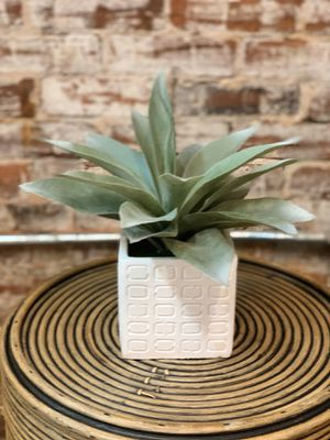 Faux Succulent for Sale in Atlanta, GA