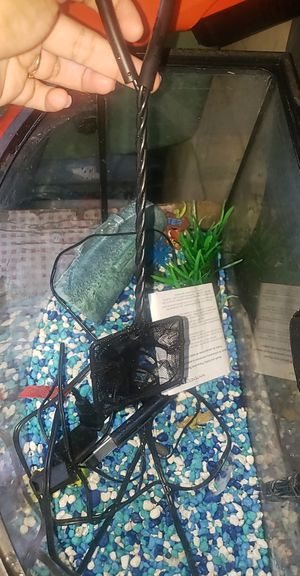 Fish tank used good condition for Sale in Pomona, CA