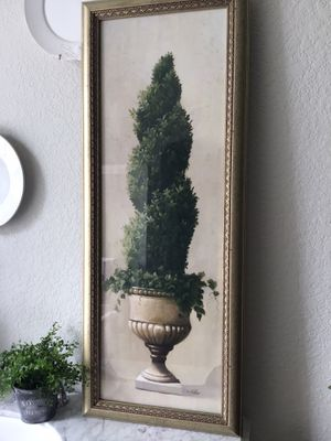 Picture of topiary for Sale in Miramar, FL
