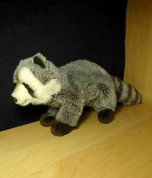 Racoon Plush for Sale in Vancouver, WA