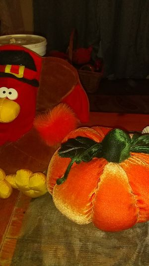 Thanksgiving stuffed animals in mint condition for Sale in Auburndale, FL