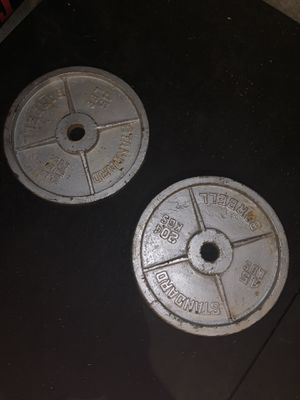 45lb Olympic Weight Plates for Sale in Danville, CA