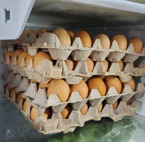 Range free eggs. for Sale in Perris, CA