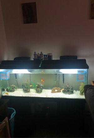 75 gallon fish tank for Sale in Hayward, CA