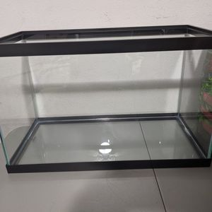 10g With Substrate + Decor for Sale in Vancouver, WA