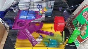 Hamster cage with supplies for Sale in Bridgeport, CT