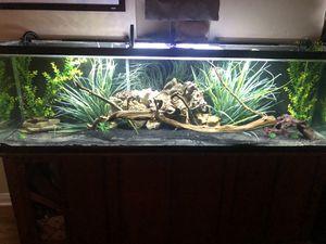 150g aquarium for Sale in Fort Worth, TX