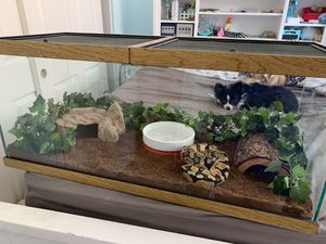 Ball Python Tank $200 for Sale in La Habra Heights, CA