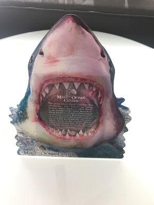 Shark Picture frame for Sale in Tempe, AZ