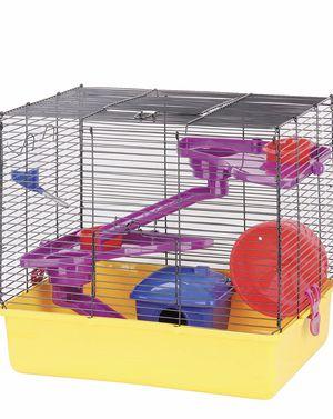 Pawsie Hamster Fun Home for Sale in Melbourne, FL
