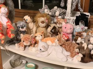 Beanie Baby Cat collection for Sale in San Diego, CA