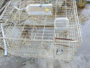 Rabbit cage off the floor w/water bottle for Sale in San Bernardino, CA
