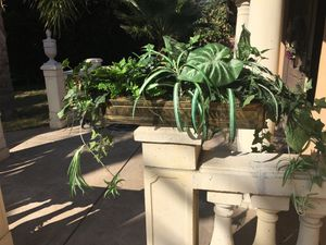 Indoor decorating planters with Brass pot . for Sale in Fremont, CA