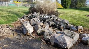 Free Firewood for Sale in Steubenville, OH