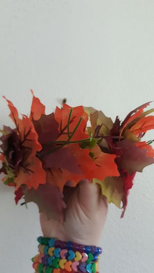 Leaf Flower Crown for Photoshoots or Performance Headband for Sale in Entiat, WA