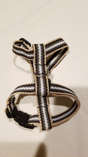 Small Dog collar for Sale in San Jacinto, CA