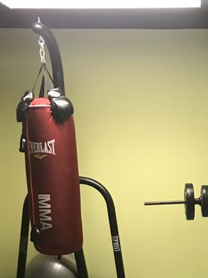 Punching bag and stand for Sale in Ligonier, IN