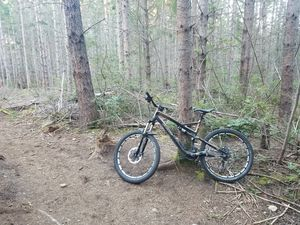 Specialized stumpjumper - full suspension mountain bike for Sale in Seattle, WA