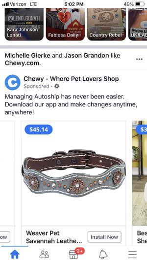 """Dog collar 16"""" for Sale in Phoenix, AZ"""
