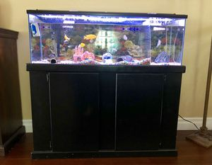 Aquarium Fish tank with stand 60 gallons for Sale in Anaheim, CA
