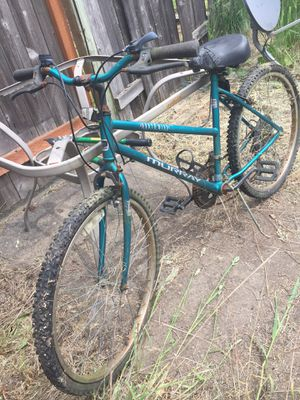 Adult Sized Used Rusty Bikes (Two) for Sale in Newberg, OR