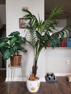 2 decorative plants with stand and ceramic pot for Sale in Dallas, TX