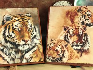 Prints of Tigers for Sale in Durham, NC