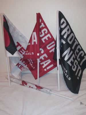Arizona Cardinals Official Authentic Team Flags (set of 4) for Sale in El Mirage, AZ