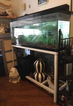 Large fish tank stand everything included for Sale in Brooklyn, NY