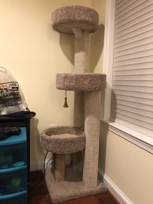 Three-Level Cat Tower for Sale in Washington, DC