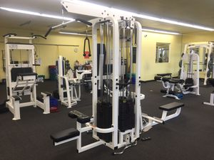 Hoist Commercial 4 Stack Multi-Purpose Weight Machine for Sale in San Mateo, CA