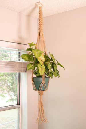 Braided Jute Plant Hanger for Sale in Austin, TX