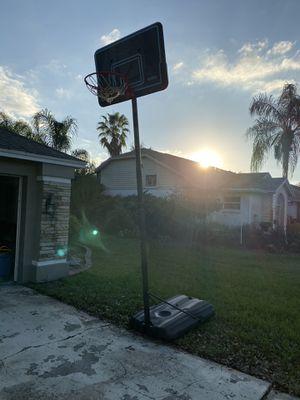 Lifetime 10ft adjustable basketball hoop for Sale in Plant City, FL