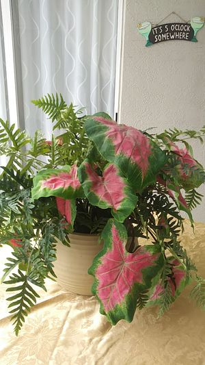 Fake plant, artificial, large for Sale in Kissimmee, FL