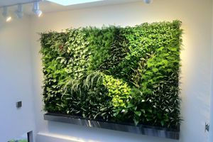 Living Wall for Sale in Bethesda, MD