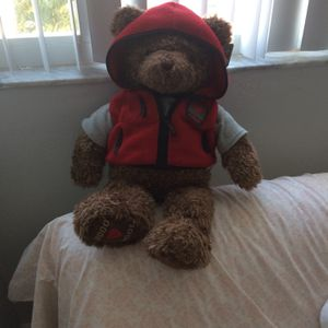 Gund Collectable Bear for Sale in Miami, FL