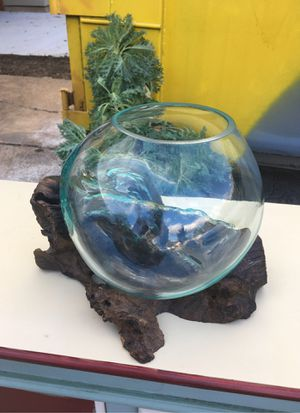 One of a kind! Large molded glass bowl with real root wood wooden holder fish bowl, terrarium, planter, candle holder for Sale in Dallas, TX