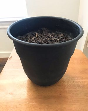 Plastic Plant Pot for Sale in Midland, TX