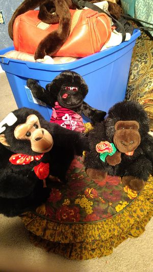 Stuffed Monkeys for Sale in Peculiar, MO