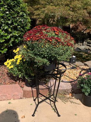 Black metal outdoor plant stand for Sale in Grayson, GA