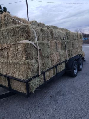Square hay bales for horses .fertilized for Sale in Fort Worth, TX