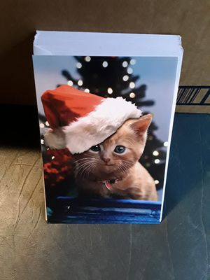 Set of 12 cat xmas cards. for Sale in Linden, PA