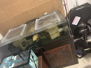 80 GALLON ACRYLIC REEF TANK WITH STAND for Sale in Vallejo, CA