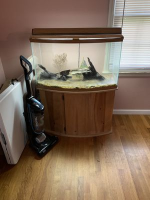 36 gallon bowfront fish tank for Sale in Lexington, KY